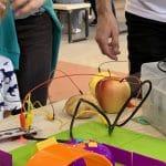 Robotyka i programowanie dla dzieci