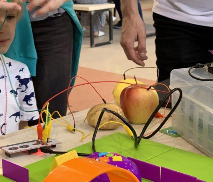 robotyka-eksperymenty-dla-dzieci